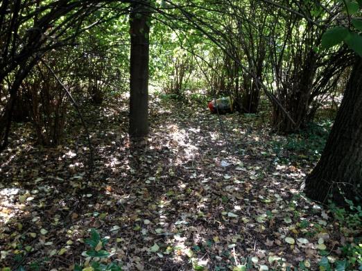 Kleiner Tiergarten in Moabit 12