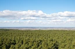 Blick nach Norden über den Schraden